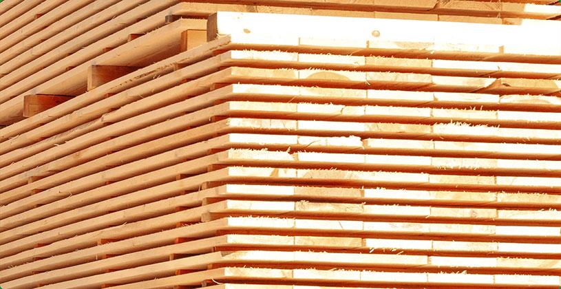 Hirschbach-GmbH-Produkte-LP-Bretter-Web.jpg